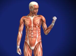 omaha muscle imbalance