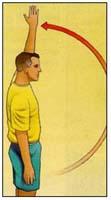 Shoulder Flexion active