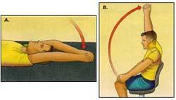 shoulder flexion