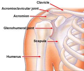 omaha shoulder trauma